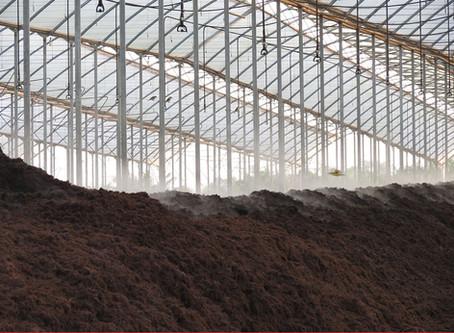 Sistemas de Irrigación Eficiente para la Sostenibilidad y Competitividad