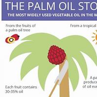 European palm oil alliance-eng.png