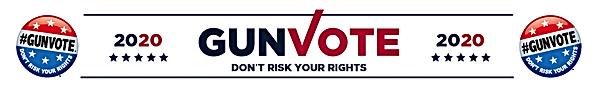 gun vote 2020 white background.png
