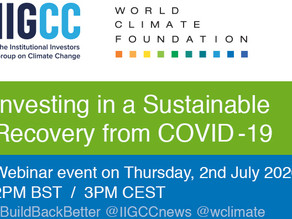 Investing in a Sustainable Recovery from COVID - 19