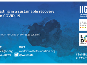 Green Recovery Webinar and Climate Investment Summit Dates
