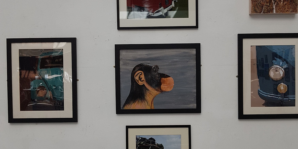 Solihull Libray Exhibition
