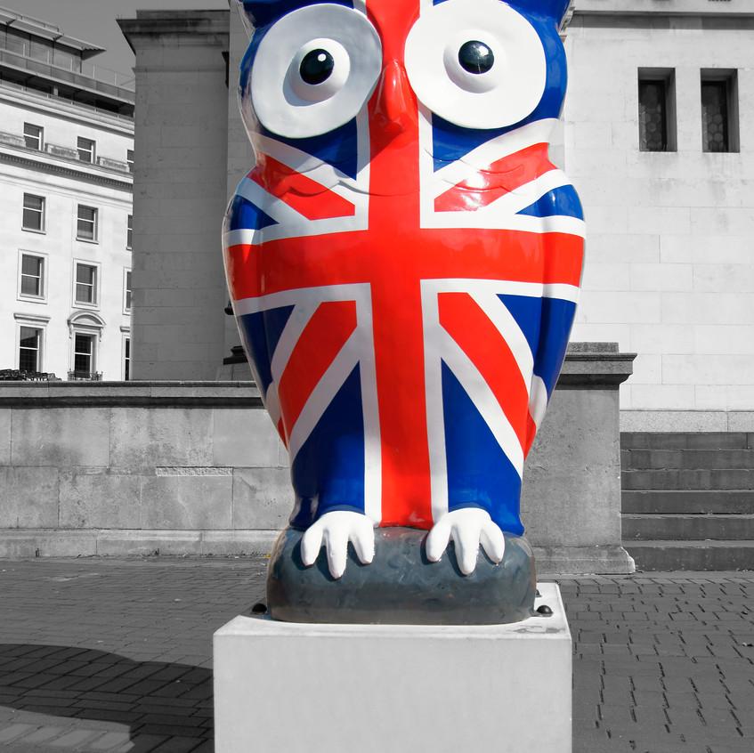 Union Flag Owl