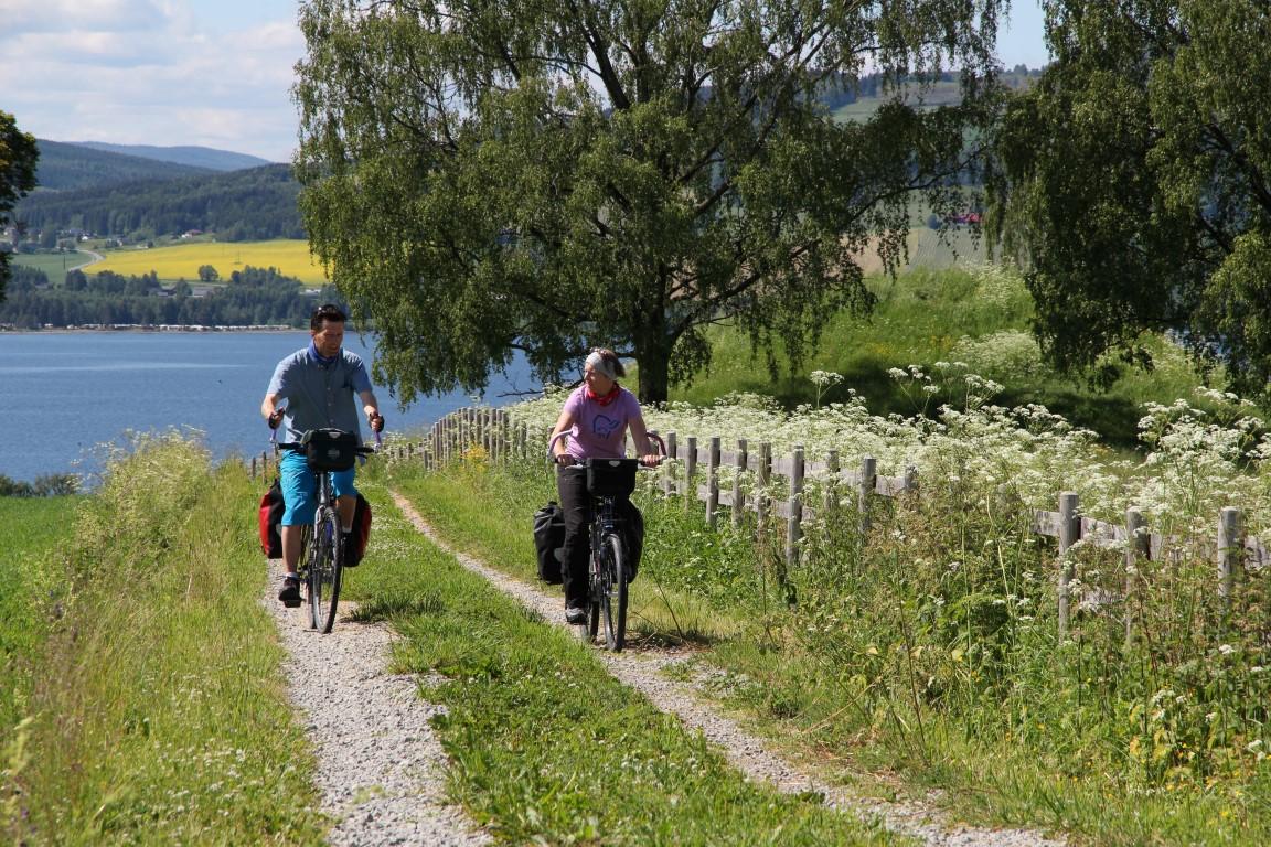 Infoteket sykling v Sveinhaug (Medium)