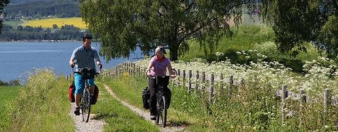 Infoteket sykling v Sveinhaug (Medium).J