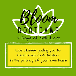 Bloom Bootcamp.png