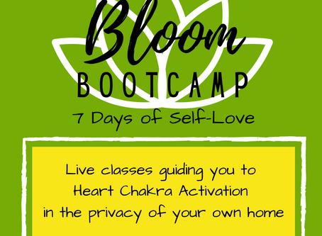BLOOM Bootcamp: How to Sign Up for The Virtual Retreat