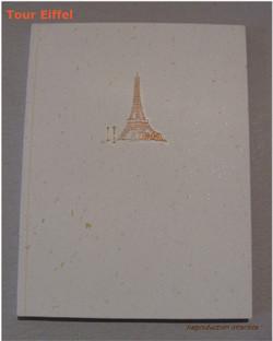 Dos collé tour Eiffel