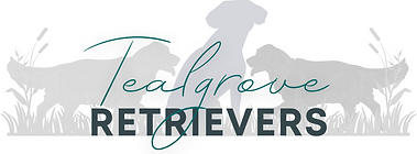 Tealgrove Retrievers - Final (LARGE).png