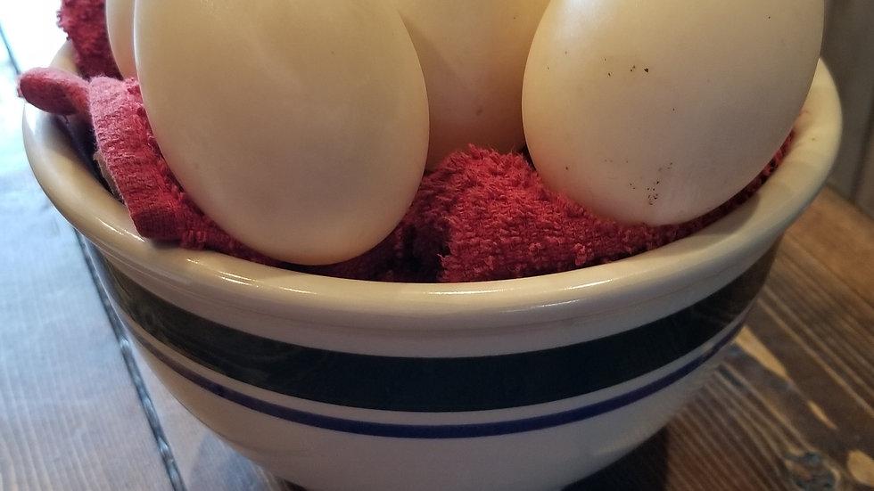 Duck Eggs- one Dozen