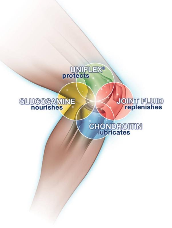 PRP Treatment & Cartilage Repair