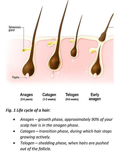 SPECIALIST HAIR LOSS CLINIC BIRMINGHAM