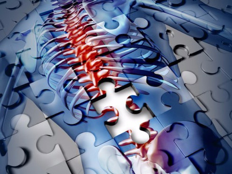What are the causes of low back pain?