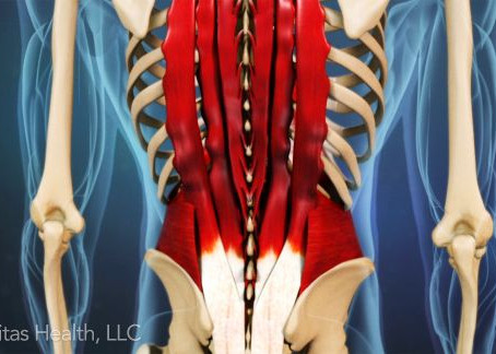 What are the causes of lumbar spine pain? Dynamic Osteopaths, Solihull
