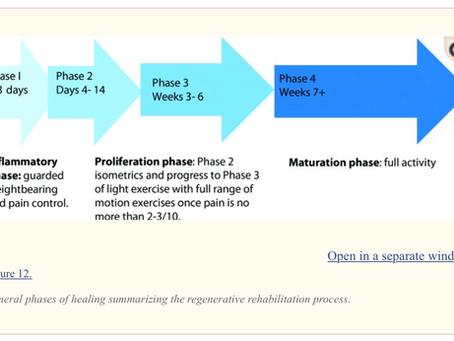 REGENERATIVE ORTHOBIOLOGICS / PRP TREATMENTS AND ASSOCIATED  REHABILITATION GUILDLINES