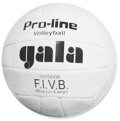 Мяч волейбольный GALA PRO-LINE 05009