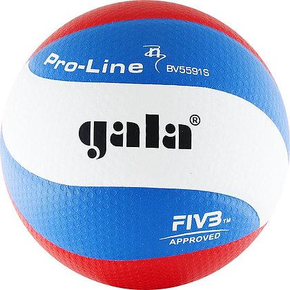 Мяч волейбольный GALA Pro-Line BV5591S