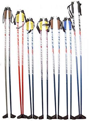 Палки лыжные RGX