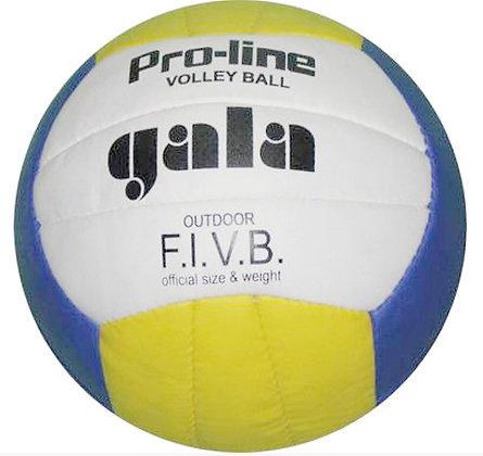 Мяч волейбольный GALA PRO-LINE  05081