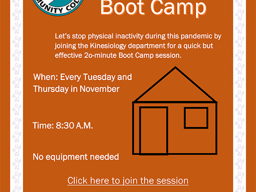 Living Room Boot Camp