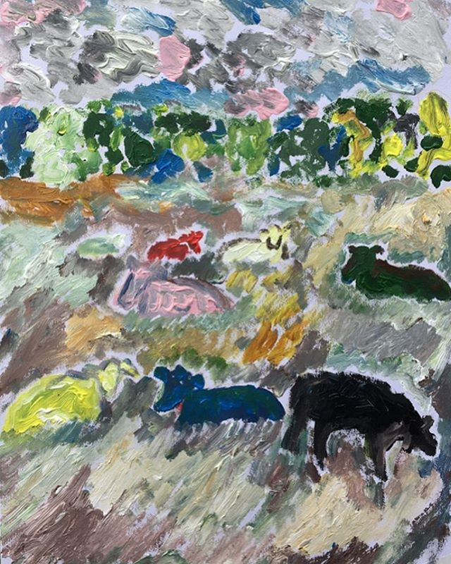"""'Cows in colour iii' 12x18"""""""