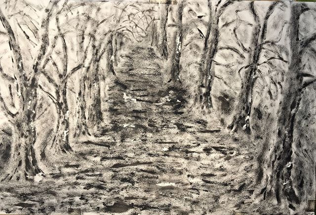 'Trees in Hyde Park, London' 40x60cm _Ea