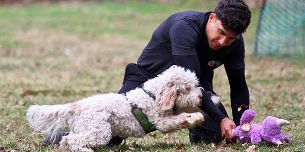 Craig Ogilvie training a white dog
