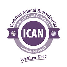 ICAN Logo-C-A-B Badge.jpg