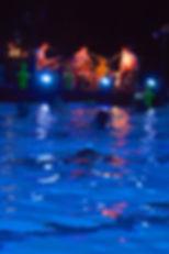 concert subaquatique, les vibrants défricheurs