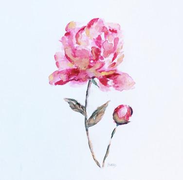 """8""""x10"""" watercolor"""
