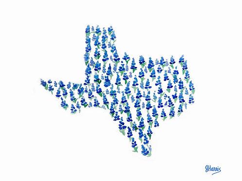 Texas Bluebonnet Print