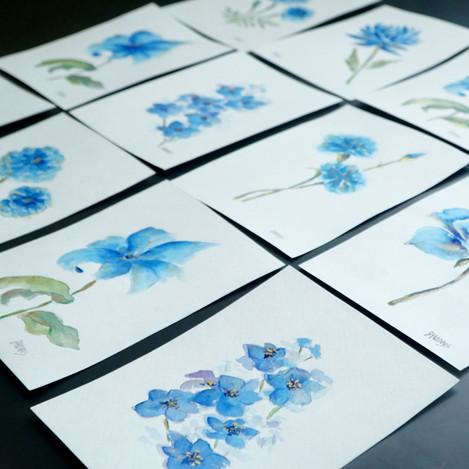 "5""x7"" watercolors"