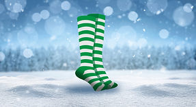 Green Socks2.jpg