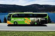 Поездки автобусом в более чем 1700 город