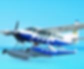 Туры на самолете.png