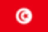 Tunisia Guide.png