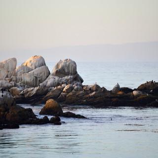 Seagull Rocks