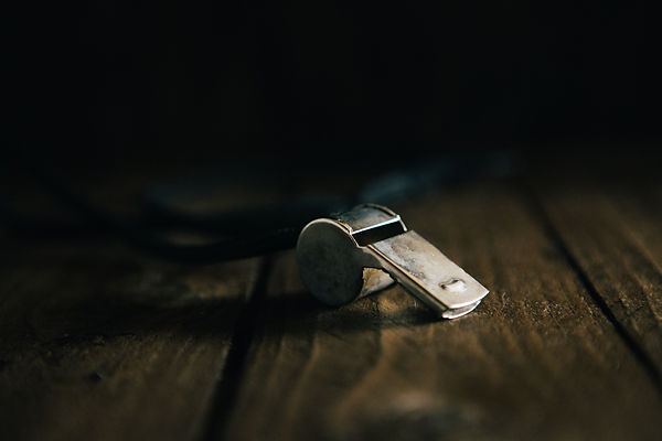 whistle and wood.jpg