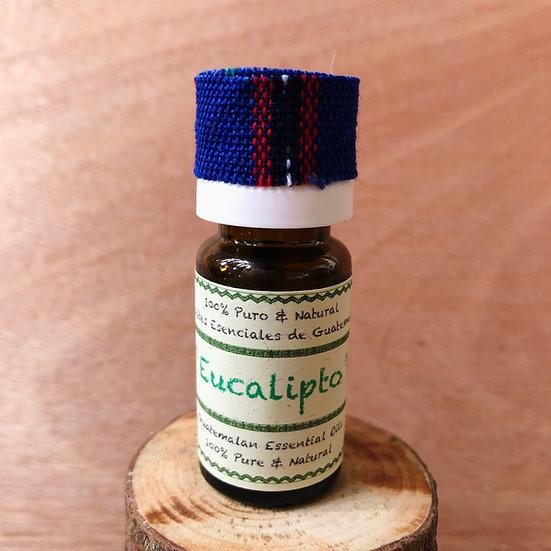 Aceite Esencial - Eucalipto 12ml