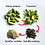 "Thumbnail: Cardamomo Premium Orgánico & Kosher ""Jumbo Bold Green"" en Vainas/Semillas/Polvo"