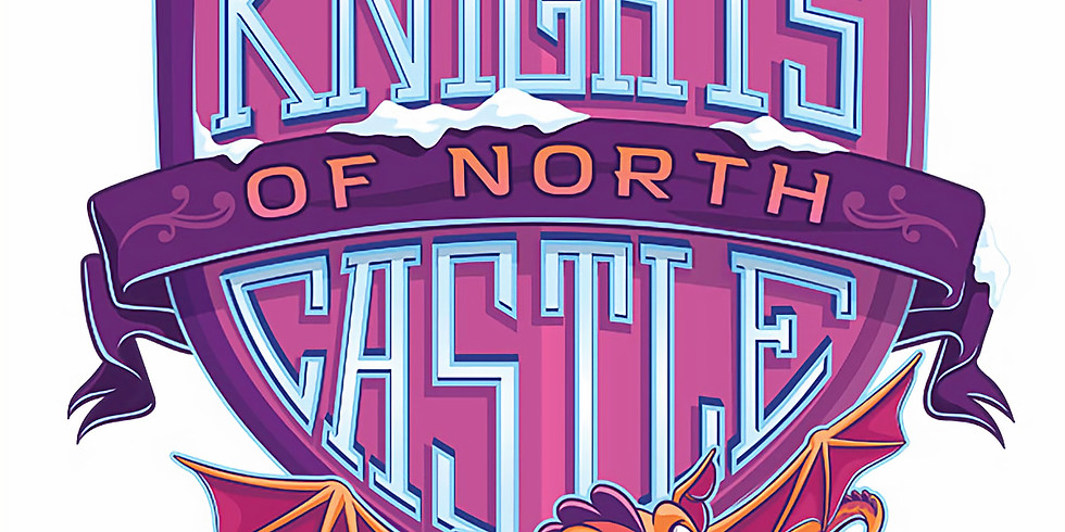 """VBS  """"Knights of North Castle"""""""