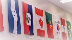 CFC flags .jpg