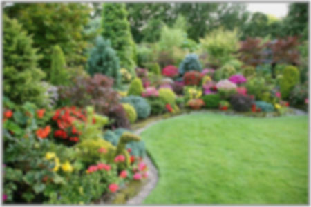 Flower and Shrub Garden.jpg