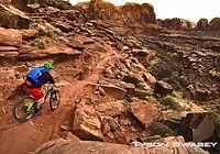 Mnt_Biking_Utah.jpg