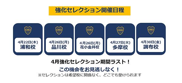 強化セレクション4月スケジュール表.png