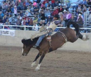 Box Elder_fair_rodeo.jpg