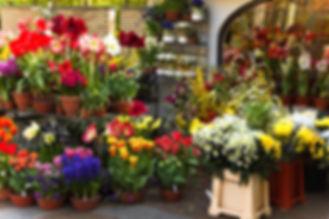 Florist_Display.jpg