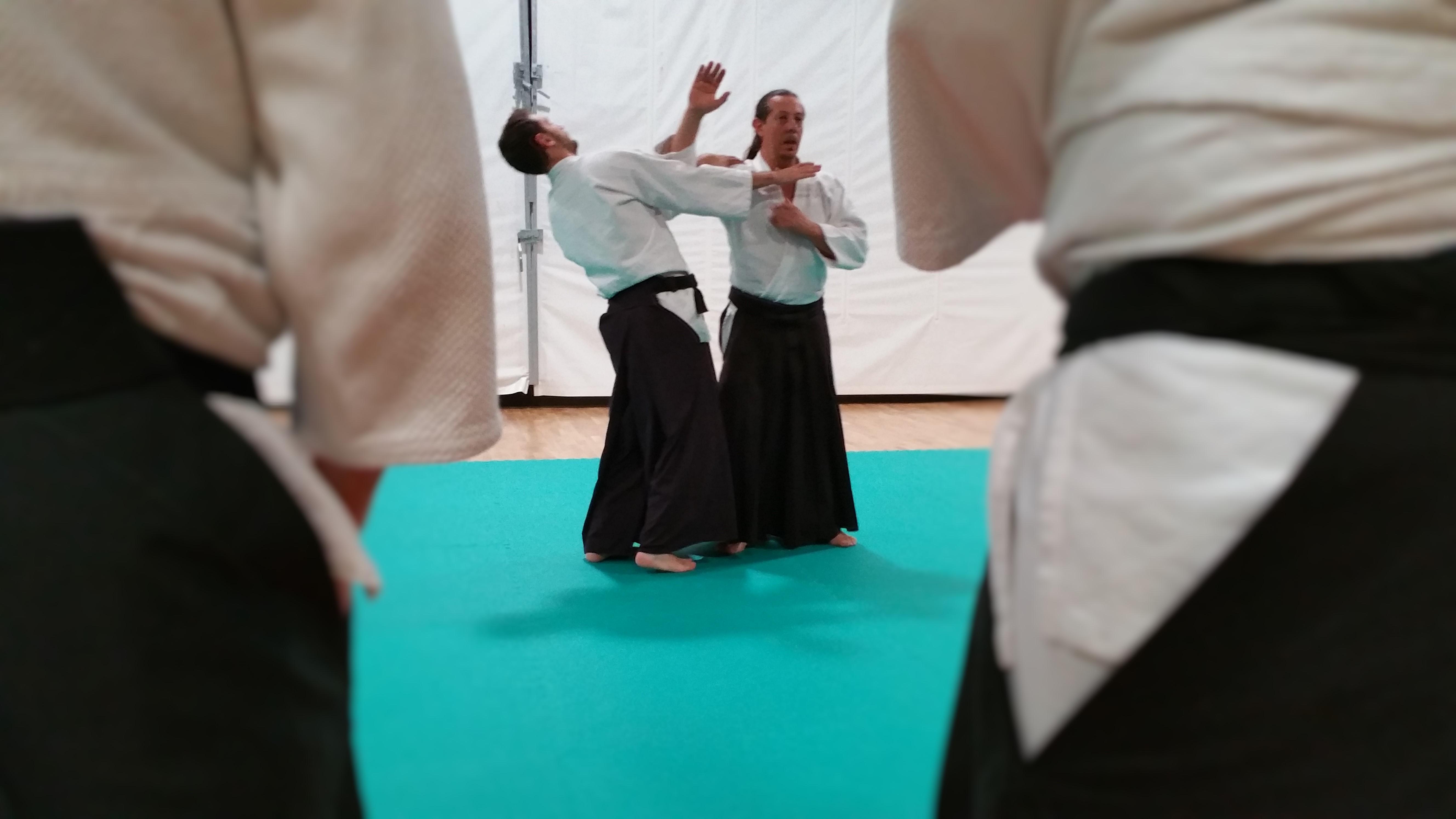 aikido adulti (20)