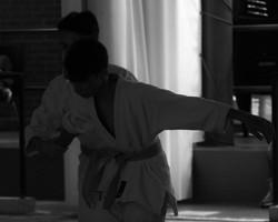 esami aikido 2016 (20)
