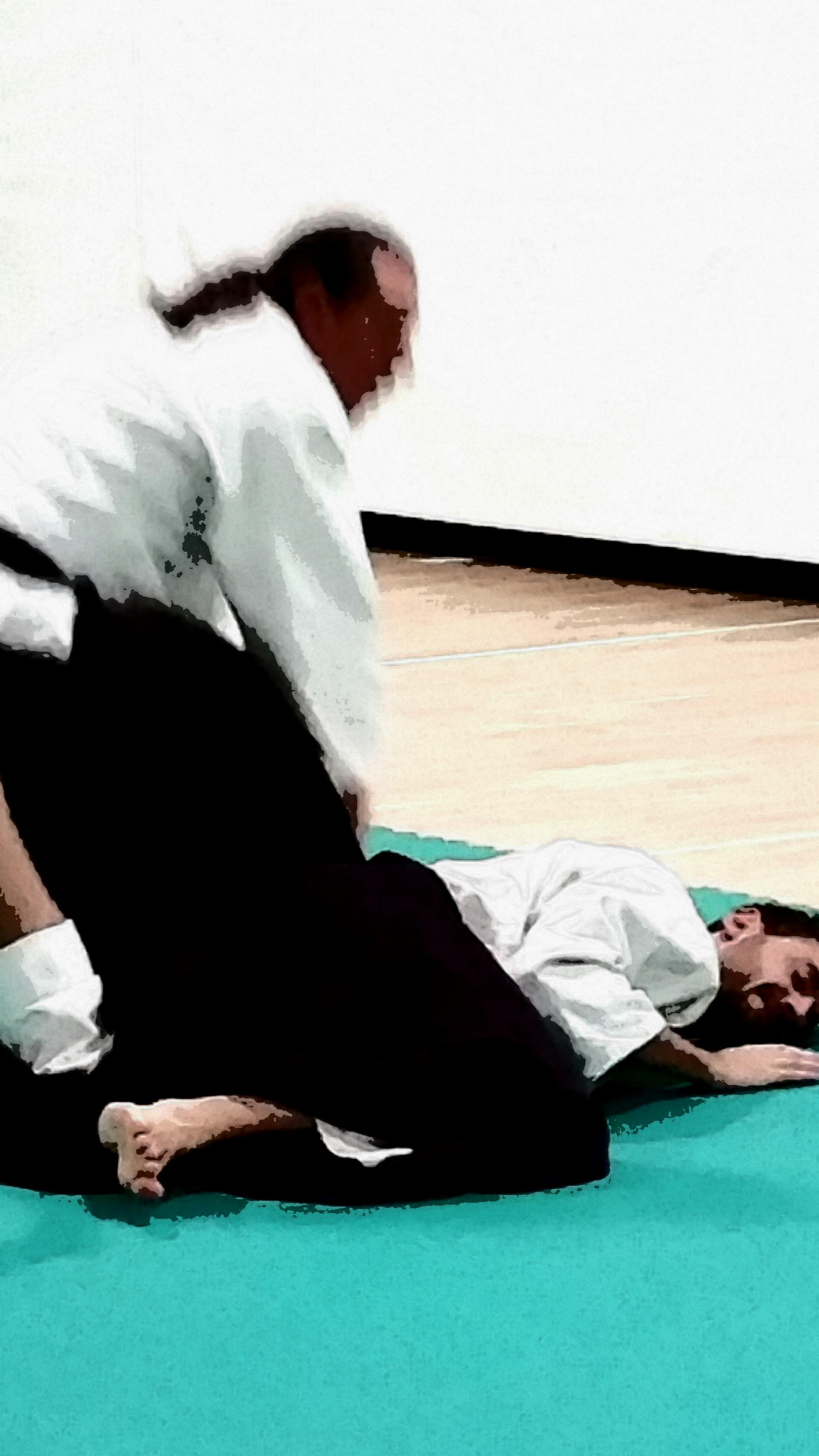 aikido adulti (24)
